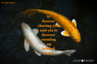 Two koi fish chasing each other in a pond