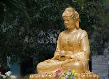 Gold gilded iron Buddha