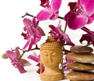 Buddha, Orchid and rocks