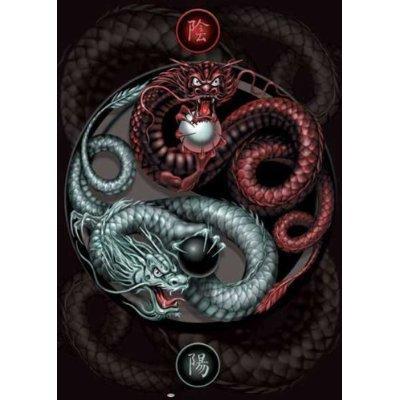 Powerful Yin Yang Dragons