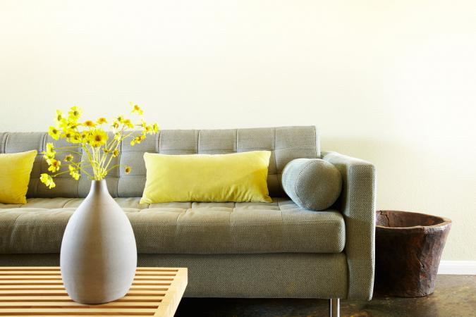 sofa with throw pillow and vase