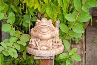 Garden frog statue