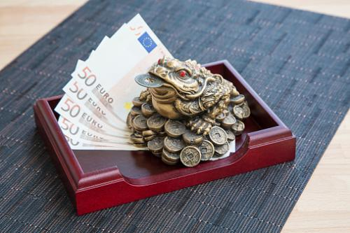 Money frog and euro