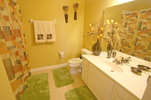 Earth Element Bathroom Colors