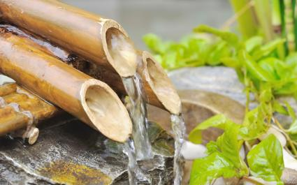 Water from a bamboo fountain