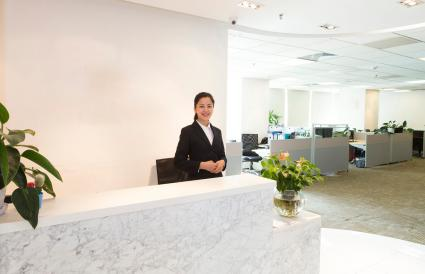 Businesswoman at office reception