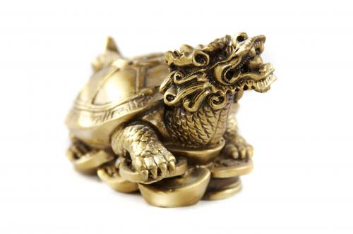 Dragon turtle standing on coins