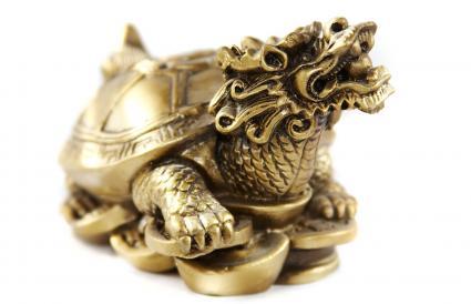 Golden Dragon Headed Money Turtle