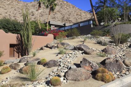 landscape cactus plants in feng shui