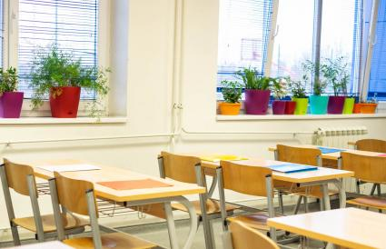 Empty classroom with flowers at the window