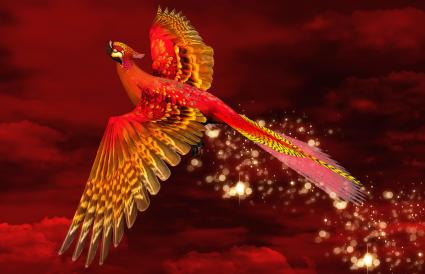 phoenix flying through a burning red sky
