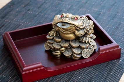 Money frog with the coin on the wooden table