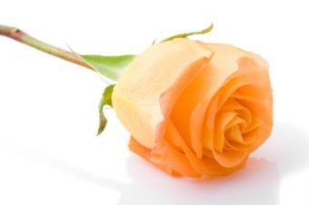 Romance Writers Online Work Opportunities