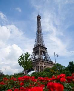 Eiffel_tower_and_roses.jpg