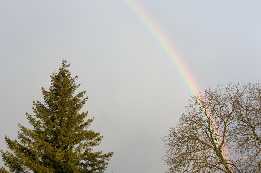 https://cf.ltkcdn.net/french/images/slide/124721-850x565-rainbow.jpg