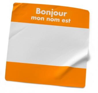 French Introductory Lesson Plans