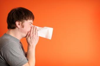 https://cf.ltkcdn.net/french/images/slide/184950-850x563-man-sneezing.jpg