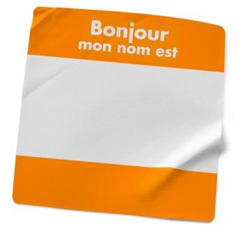 Introductory French