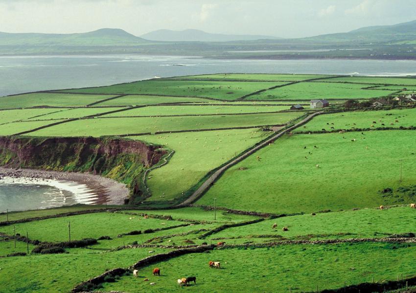 https://cf.ltkcdn.net/fun/images/slide/206419-850x600-Irish-countryside.jpg