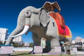 https://cf.ltkcdn.net/fun/images/slide/204585-850x565-Lucy-the-Elephant.jpg