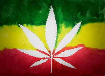 https://cf.ltkcdn.net/fun/images/slide/212012-850x618-Cannabis-Leaf.jpg