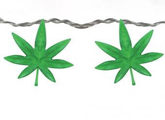 https://cf.ltkcdn.net/fun/images/slide/227362-850x618-cannabislights2.jpeg