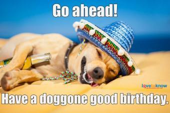 https://cf.ltkcdn.net/fun/images/slide/234004-850x567-7-happy-dog.jpg