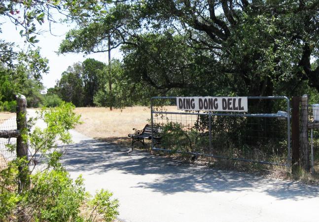 Ding Dong, TX