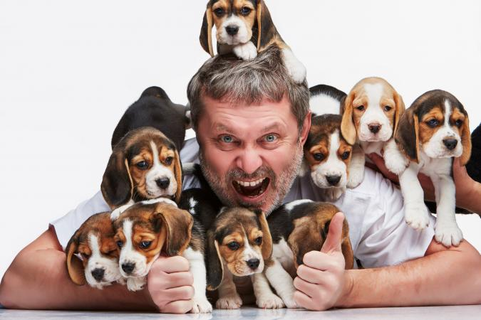 Man buried in puppies