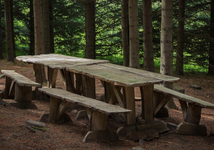 https://cf.ltkcdn.net/furniture/images/slide/256372-850x595-5_wood_plank_picnic_table.jpg