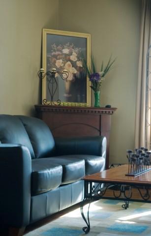 Make Cushions for Sofas