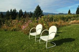 Two retro metal lawn chairs