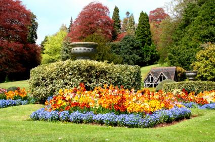 English Garden Flowers Lovetoknow