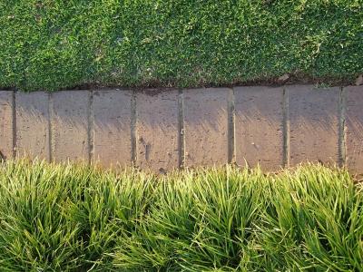 Bricks As Garden Edging Lovetoknow, How To Lay Brick Pavers Garden Edging