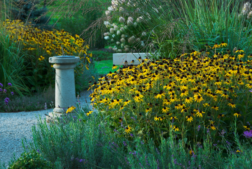 deco-grass-perennial-border.jpg