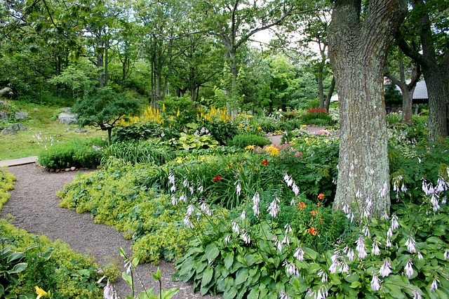 How To Choose What Trees To Plant Lovetoknow