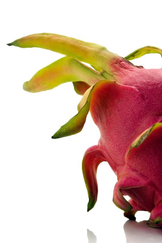 https://cf.ltkcdn.net/garden/images/slide/112078-567x847-Dragon-Fruit.jpg