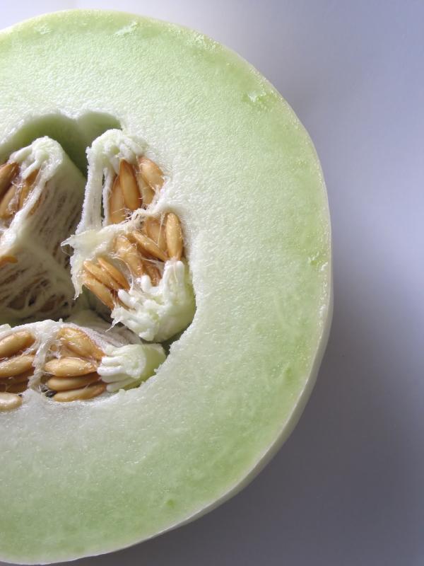https://cf.ltkcdn.net/garden/images/slide/112080-600x800-Honeydew-Melon.jpg