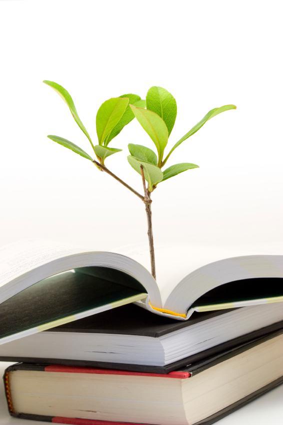 https://cf.ltkcdn.net/garden/images/slide/112199-566x848-free-tree-seedling-3.jpg
