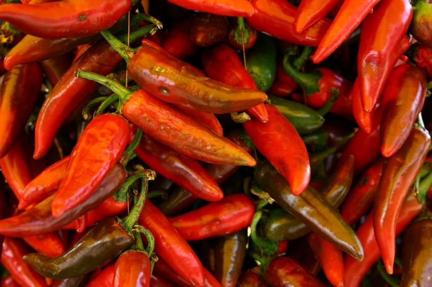 https://cf.ltkcdn.net/garden/images/slide/148996-849x565-hot-pepper-2.jpg