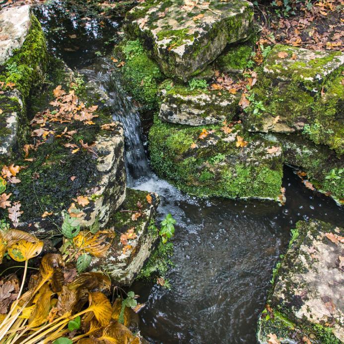 https://cf.ltkcdn.net/garden/images/slide/175375-693x693-rock-mossy-boulders.jpg