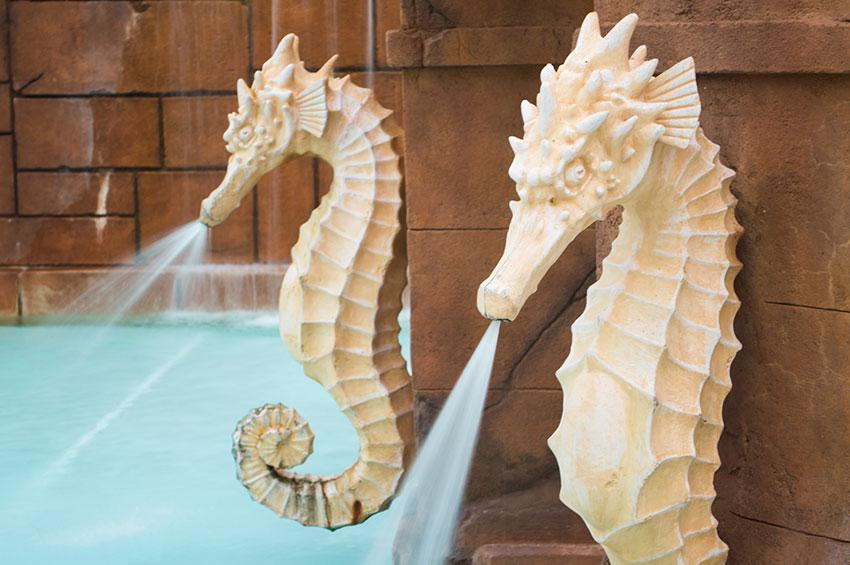 https://cf.ltkcdn.net/garden/images/slide/178716-850x565-seahorse-fountain.jpg