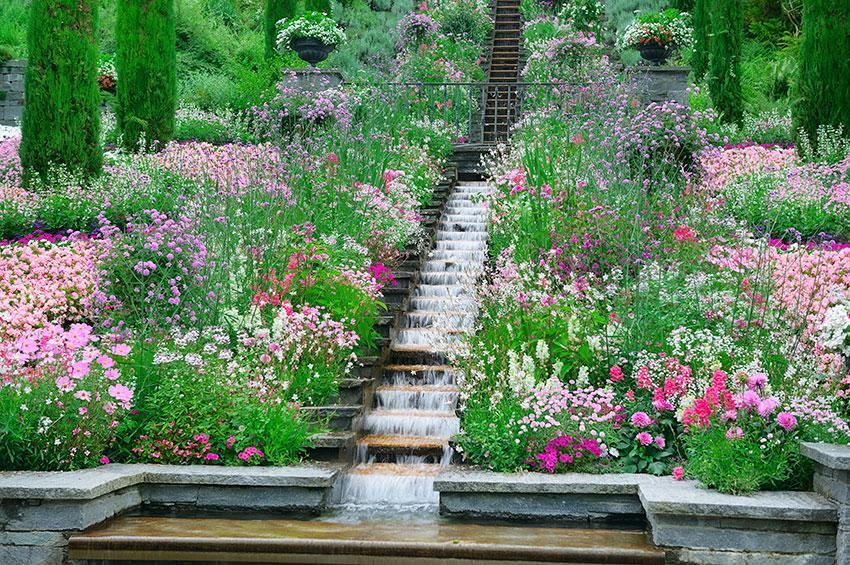 https://cf.ltkcdn.net/garden/images/slide/178717-850x565-step-waterfall.jpg