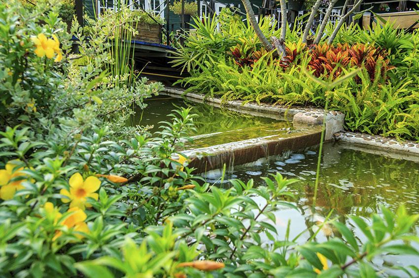 https://cf.ltkcdn.net/garden/images/slide/178718-850x565-terraced-pond.jpg
