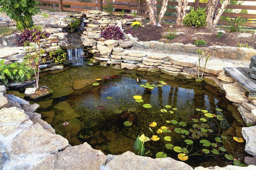 https://cf.ltkcdn.net/garden/images/slide/178723-850x565-pond-with-small-waterfall.jpg