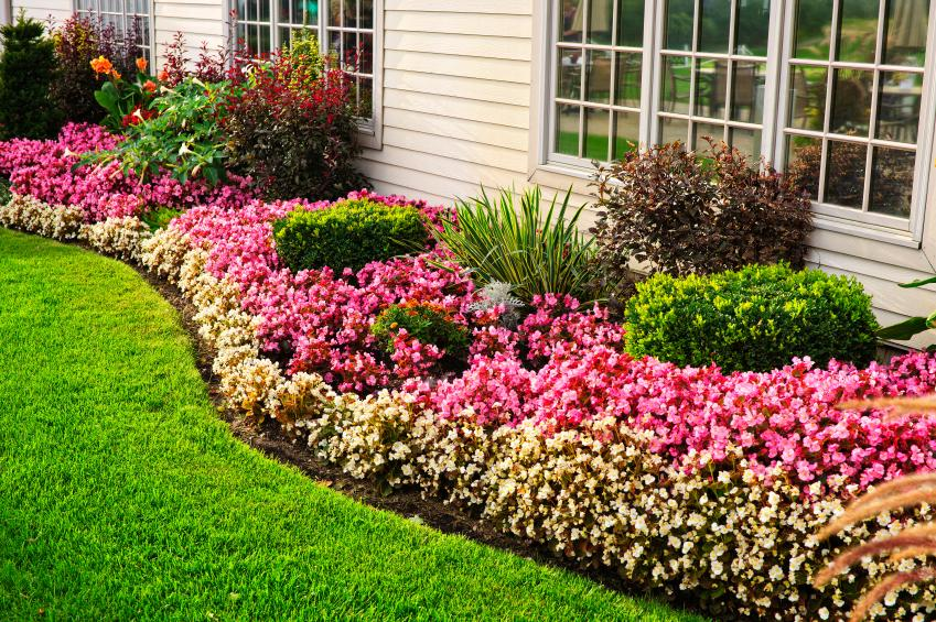 Terraced Front Yard Source Undulating Flowering Edge With Flower Bed  Landscaping Ideas