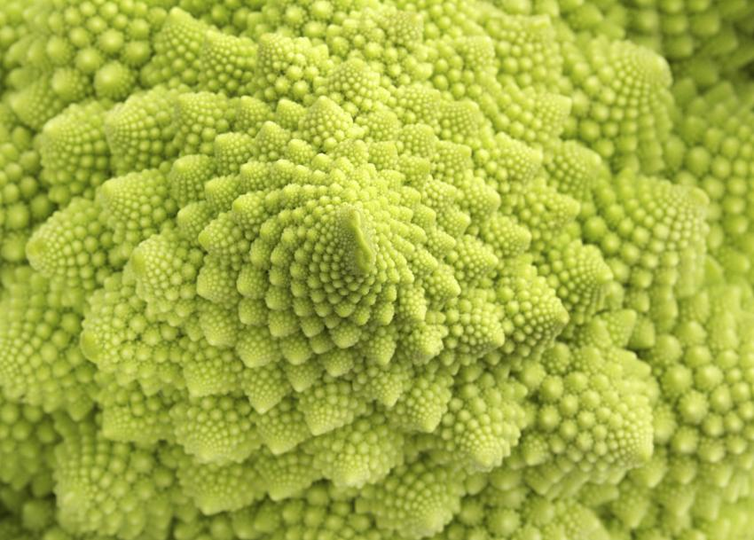 https://cf.ltkcdn.net/garden/images/slide/185030-850x609-romanesco-broccoli.jpg