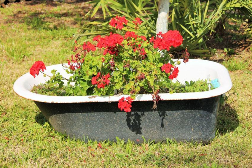 https://cf.ltkcdn.net/garden/images/slide/194307-850x566-bathtub-planter.jpg