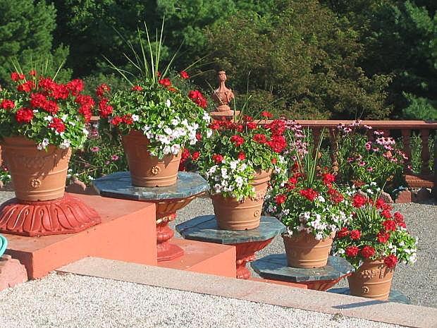 https://cf.ltkcdn.net/garden/images/slide/196615-620x465-Red-Garden-Flowers.jpg