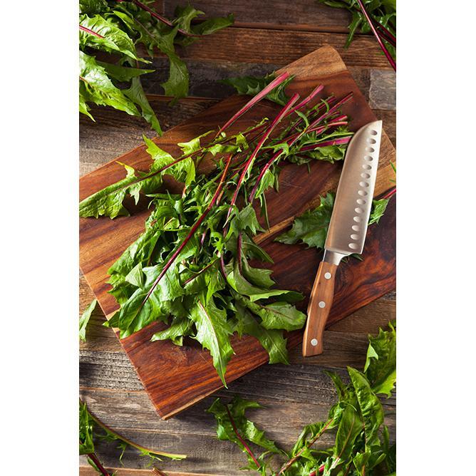 https://cf.ltkcdn.net/garden/images/slide/200035-668x668-Weeds-you-can-eat.jpg
